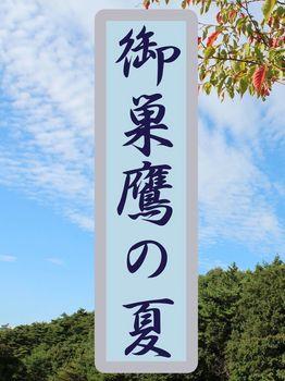 御巣鷹の夏-P_iBooks_表紙_IMG_2425.jpg